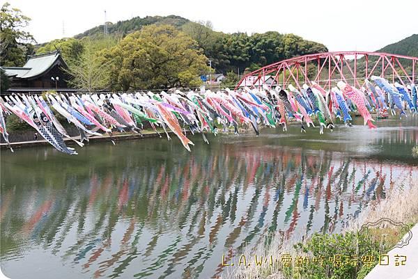 20160409日本九州親子7日自由行Day4-2佐賀@井上川鯉魚旗祭-07.jpg