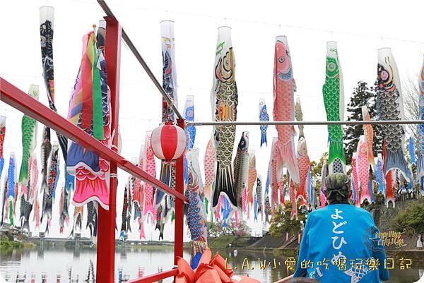 20160409日本九州親子7日自由行Day4-2佐賀@井上川鯉魚旗祭-14.jpg