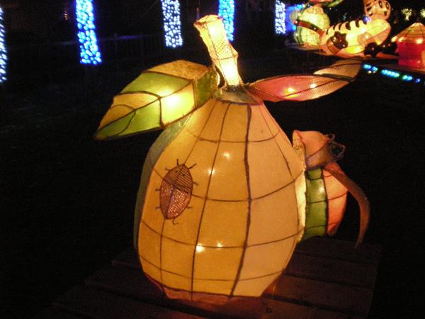 Chi Chi Lantern Festival 30.jpg