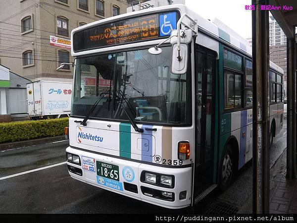P1330125.jpg