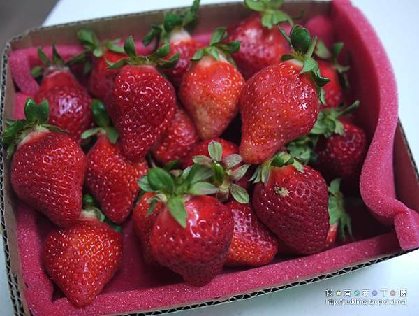 DIY草莓生日蛋糕03.jpg