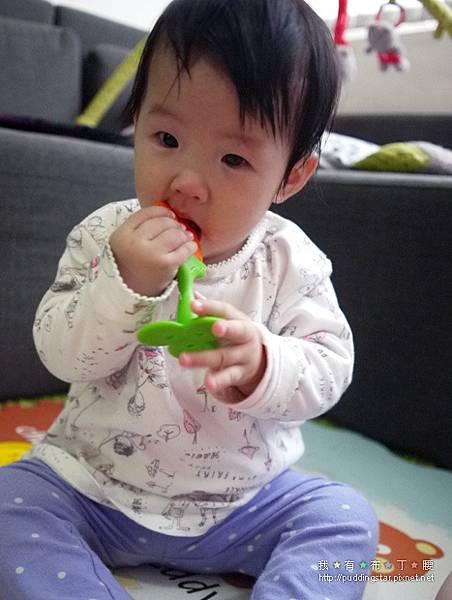 Nuby固齒器玩具008.jpg