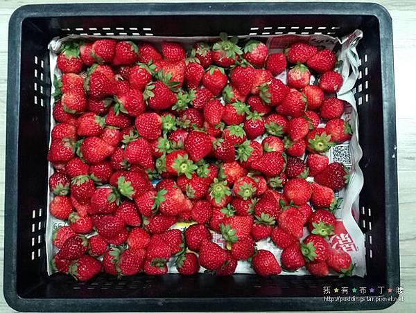 草莓果粒醬和英式司康001.jpg