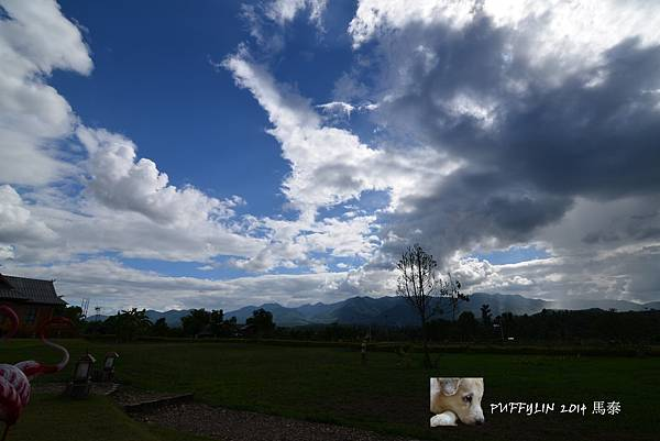 PhotoCap_20140521- (294).jpg