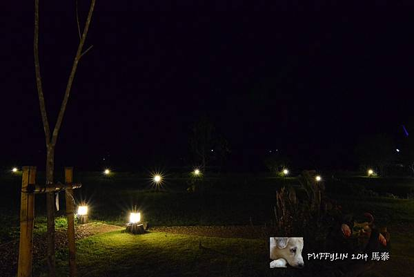PhotoCap_20140521-(496).jpg
