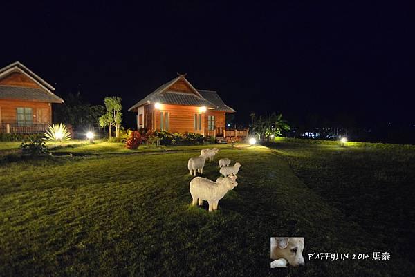 PhotoCap_20140521-(540).jpg