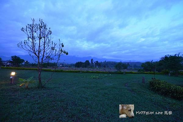 PhotoCap_20140522-(13).jpg