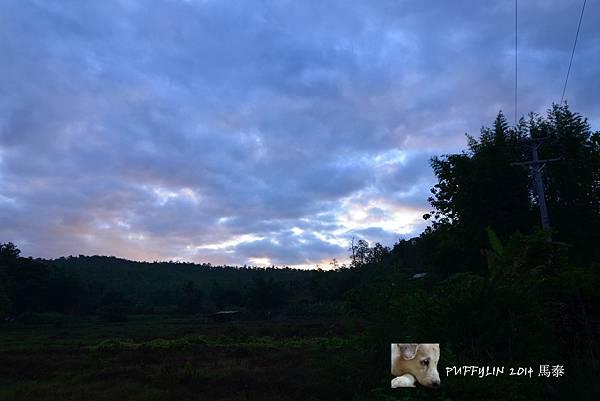 PhotoCap_20140522-(69).jpg