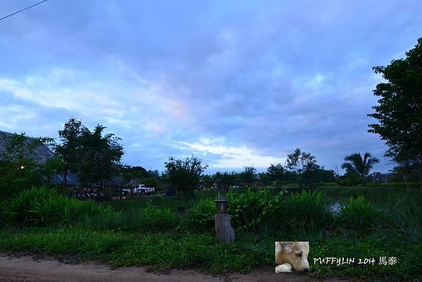 PhotoCap_20140522-(71).jpg
