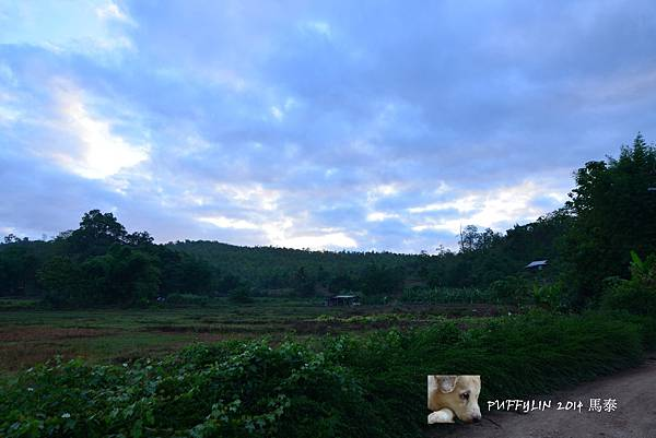 PhotoCap_20140522-(91).jpg