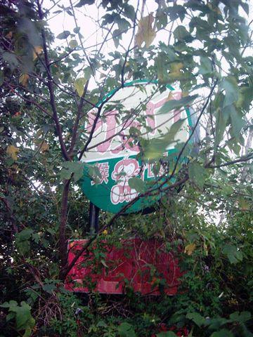 被颱風摧毀的園區