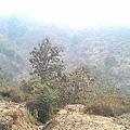 C360_2012-03-03-11-15-52_org