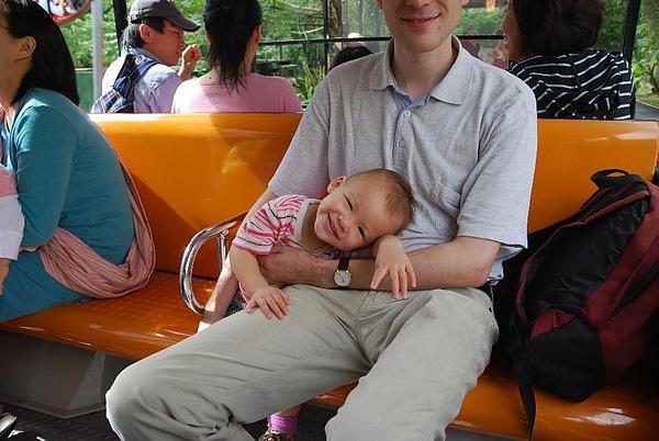 坐動物園的遊園車
