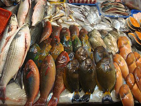 華僑市場魚.jpg