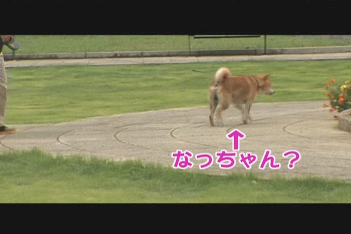 KMP-DVD[(017257)22-30-58].JPG
