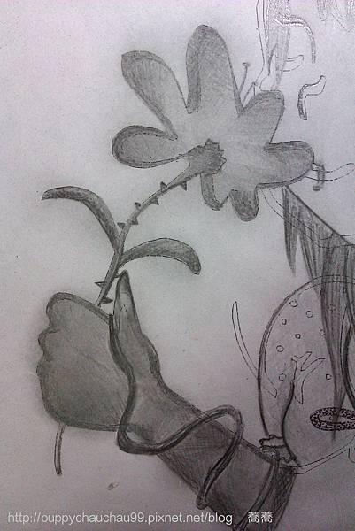 手裡的花兒