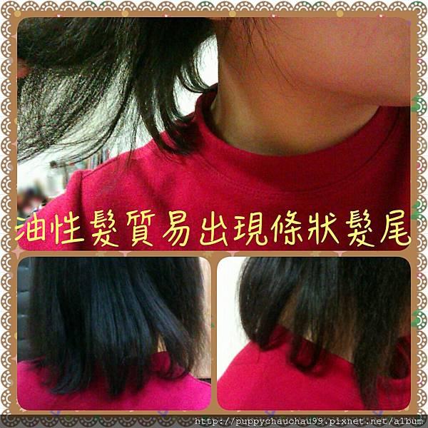 油性髮質易出現條狀髮尾