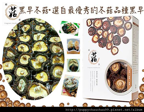 鄉菇香 黑早冬菇料理分享(首圖).jpg