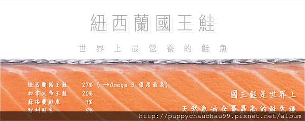[盛和風食集]紐西蘭國王鮭魚(2)