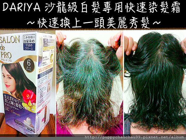 DARIYA 沙龍級白髮專用快速染髮霜(特色圖片)