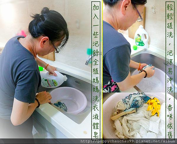 泡舒全植媽媽洗衣液體皂(6)