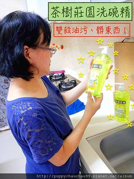 茶樹莊園洗碗精(首圖)