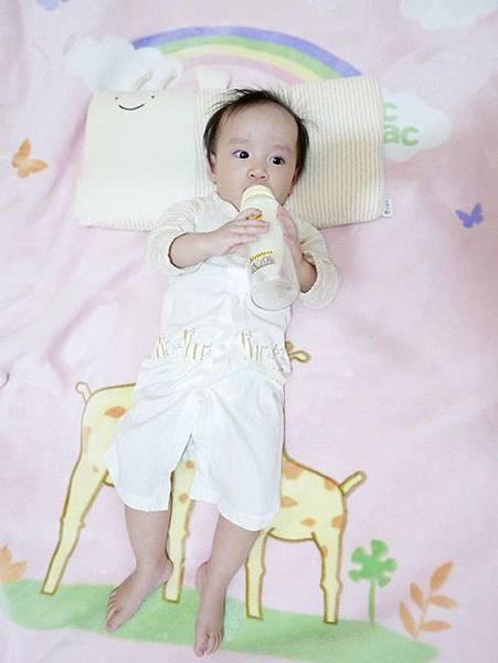 cani有機棉透氣護頭嬰兒枕(0-2.5歲) (10)