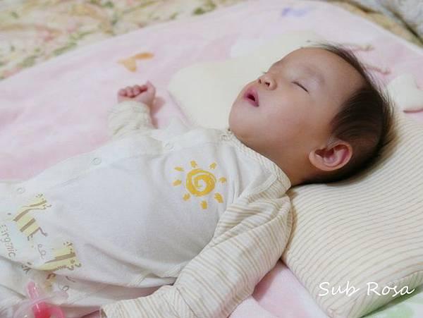cani有機棉透氣護頭嬰兒枕(0-2.5歲) (14)