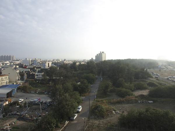 塔頂的風景