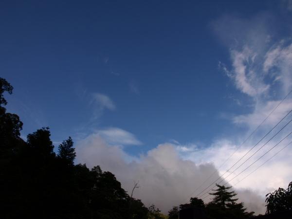 又放晴啦!!!...山上的天空還是挺藍滴!我可沒有偷偷用CPL唷