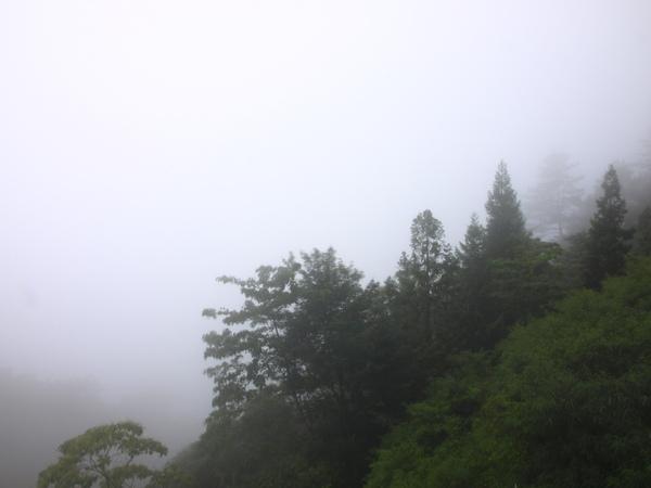 山嵐起....四周圍繞著濃霧!!!