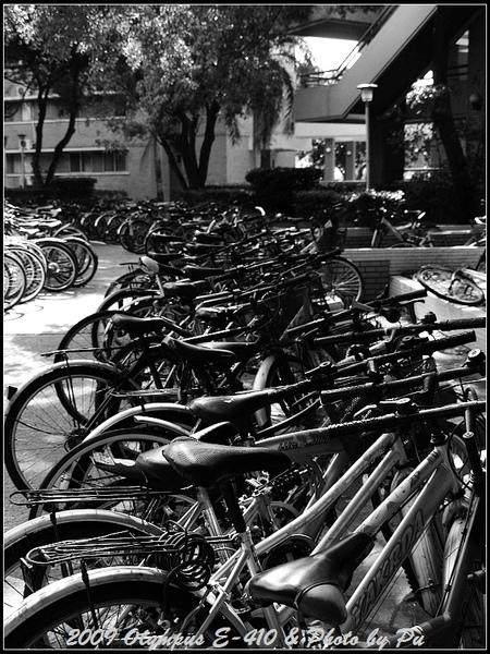 成大校園內常常可以見到成排的腳踏車