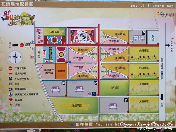 2009新社花海節~導覽圖