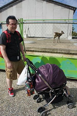 日本京京阪神奈六日遊(4th Day) (43)