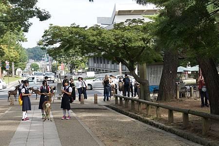 日本京京阪神奈六日遊(4th Day) (68)