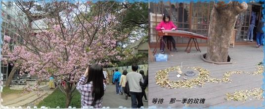 2015新竹公園1.jpg