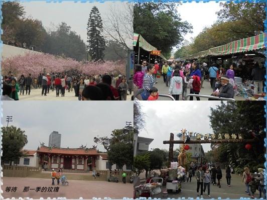 2015新竹公園2.jpg