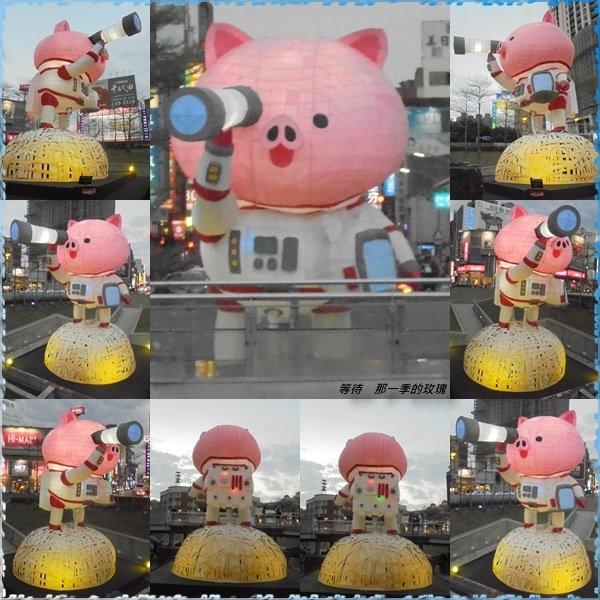 02019新竹-豬