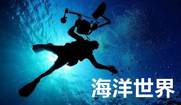 sea-79606_960_720