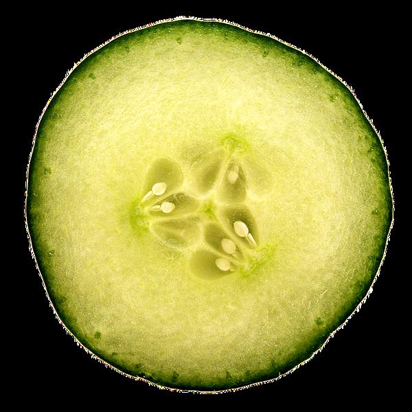 cucumber-1687628_960_720