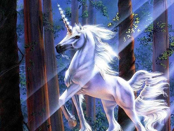 1419616-unicorn