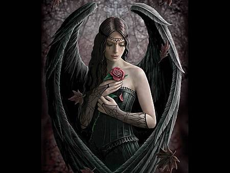 dark-angel-free-witch-rose-the-311314