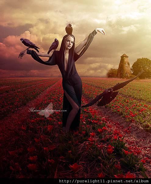 attractcrow_by_maiarcita-d7wj8yx