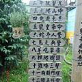 雲科生態農場28.JPG