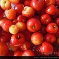 西印度櫻桃汁2