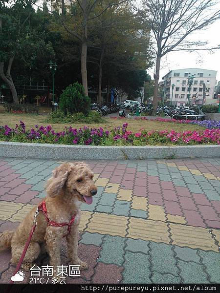 2014.02.04初5.2.jpg