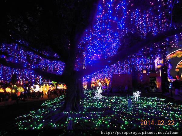 2014台灣燈會22.JPG