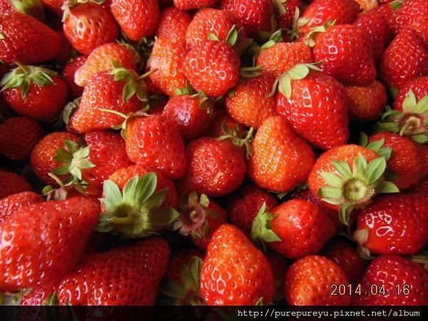 麵包機做草莓果醬.2.JPG