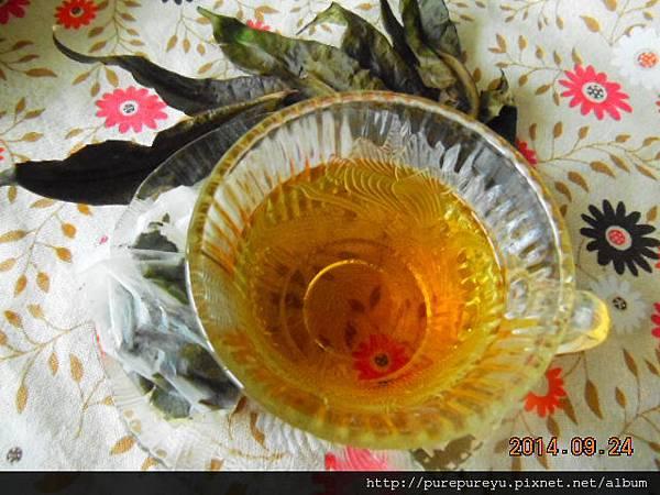 香椿茶.5.JPG
