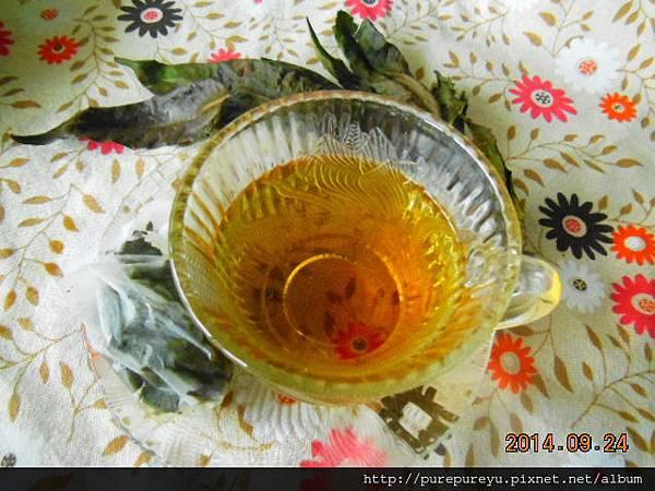 香椿茶.6.JPG